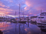 Boats Docked in Harbor at Sunset in Port Townsend  Washington  USA