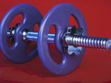 Purple Plastic Dumbbell for Workout