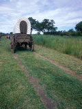 School Children Tour Oregon Trail Conestoga Wagon  Walla Walla Washington  USA