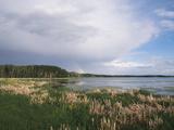 Scenic View of Wetlands