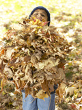 Little Boy Carrying Huge Pile of Leaves