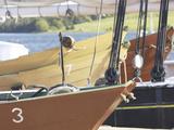 Racing Sailboats Moored to Dock