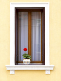 Blooming Red Geranium on Beautiful White Wooden Windowsill