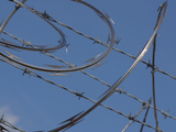 Close-up of Coiled Razor Wire and Barbed Wire on a Fence Against Blue Sky