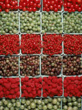 Raspberries  Gooseberries  Red Currents
