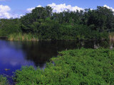 Everglades National Park  FL
