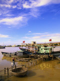 Moored Fishing Boats  Han River  Vietnam