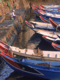 Fishing Boats in Harbor  Taiwan