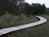 Drummond Point Park Nature Trail  Amelia Island