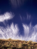 Cirrus Clound Called Mare's Tails