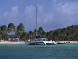 Daytrip Catamaran  Tobago Cays  Grenadines