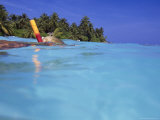 Woman Snorkeling  Maldives Islands  Indian Ocean