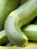 Close-up of Marrows