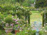 Rose Garden with Wooden Trellis  Little Malvern Court Worcester