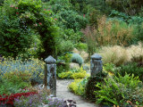 Granite Gate Posts in Contemporary Garden Late Summer Pinsla Garden  Cornwall