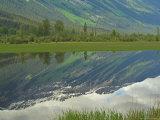 Moose Lake  Mt Robson Provincial Park  Canada