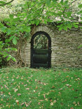 Ornamental Gate in Shade Under Tree  View Through Gateway  October  Hestercombe  Somerset