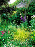 Country Garden with Colourful Perennials  Pond  Greenhouse and Statues  Sharcott Manor  Wiltshire