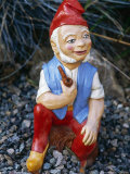 Gnome at Garden Paradise  Newhaven  Sussex