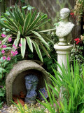 Ornamental Stone Cover Bust with Variegated Yucca and Hardy (Pelargonium) Geranium