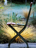 Chair (Bandstand) with Stipa Arundinacea (Pheasant Grass)