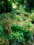 Garden Situated on a Hillside Overlooking Loch Ness  Scotland