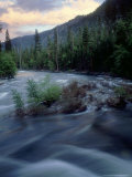 Rapids at Sunset  Kings Canyon National Park  California  USA