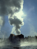 Castle Geyser at Old Faithful Geyser Basin  Wyoming  USA