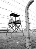 Electric Fence and Lookout Tower  Auschwitz  Poland