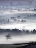 Misty Morning View from Haldon Woods  Devon  UK