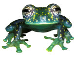 Glass Frog  Panama