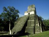 Mayan Ruins at Tikal  El Peten  Guatemala