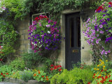 Country Cottages  England