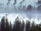Lake at Dawn in the Mist  Kuusamo Area  Northeast Finland