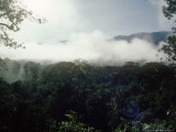 Mulu National Park  Borneo  Weather Time-Lapse  8Am