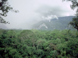 Mulu National Park  Borneo  Weather Time-Lapse  4Pm