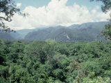 Mulu National Park  Borneo  Weather Time-Lapse  1145 AM
