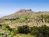 Santiago Del Teide  Tenerife  Location of the Last Volcanic Eruption on Tenerife in 1909