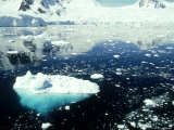 Icebergs  Antarctic Peninsula