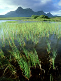 Ben Loyal from Lochan Hakel  Sutherland