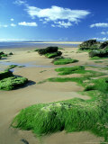 Dornoch Beach  Scotland