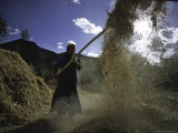 Woman with Straw  Tibet