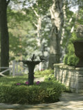 Birdbath and Planter