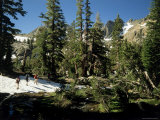 Ansel Adams Wilderness  California  USA