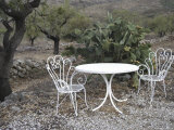 Table and Chairs Beside a Cactus Plant on a Hillside