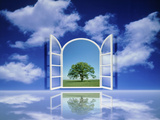 A Tree Seen Through an Open Window in the Sky