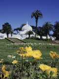 Conservatory of Flowers  Golden Gate Park  San Francisco  California  USA