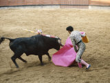 Bullfighting  Plaza de Toros  Ronda  Andalusia  Spain