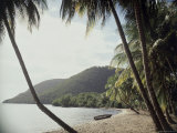 Prince Rupert Bay  Dominica