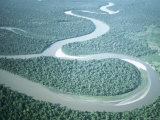 Aerial View of Amazon River and Jungle  Brazil
